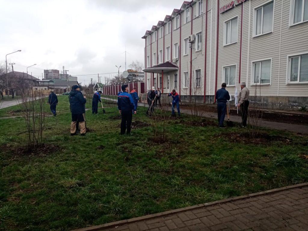 День древонасаждений и много новых акций по озеленению города.