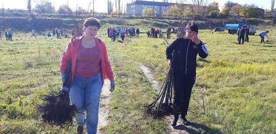 фото с сайта с администрации Чертковского сельского поселения
