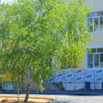 Скоро на учебу! Ремонт школы №4  подходит к завершению.
